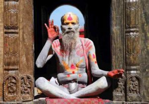 yogui con mano con símbolo ok